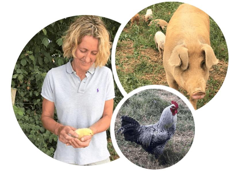Family run organic farm